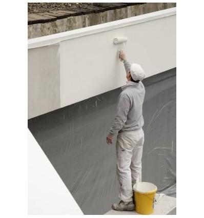 Wall N Roof Coating Pekay Group